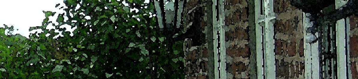 lundgaard - Hausmynd